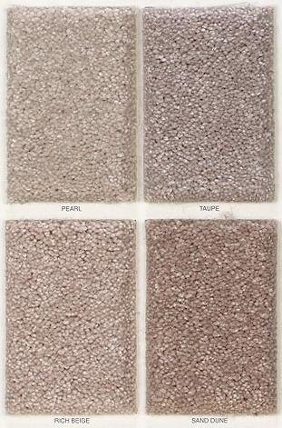 Best buy carpet trackless carpet wholesale direct at for Best carpet to buy