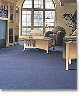 Anso Nylon Carpet