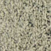 Soft Luxury Stainmaster Carpet