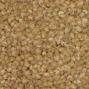 Wholesale Carpet Buy Camelot Series Plush Carpet At