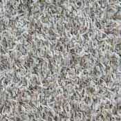 Tailored Twist Polyester Carpet Frieze