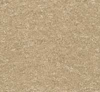 Bounty II Builder Choice Carpet P.E.T. Polyester Fiber