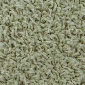 Nylon Frieze Carpet BCF Nylon Carpet