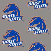 Boise State University College Broadloom Carpet