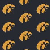 University of Iowa Collegiate Broadloom Carpet