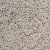 Stainmaster Nylon Carpet