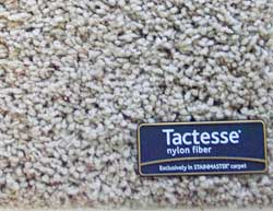 Stainmaster Active Family Carpet Review