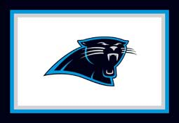 Carolina Panthers C1013