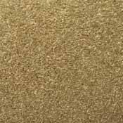 Nitro Continuous Fillament Polyester Solution Dyed Rental Property Carpet Fawn