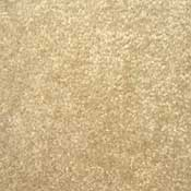 Nitro Continuous Fillament Polyester Solution Dyed Rental Property Carpet Toast