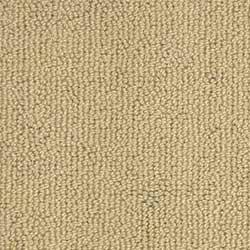 By Chance Stainmaster Nylon Carpet