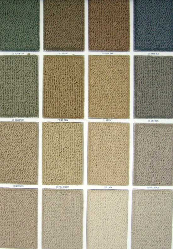 By Chance Philadelphia Stainmaster Nylon Carpet
