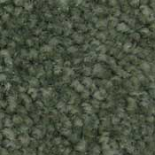 Town Hall Carpet Values Carpet Wholesale Pine Needle