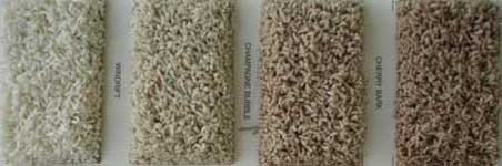 westchester anso crush resister iii nylon carpet anso carpet frieze carpet