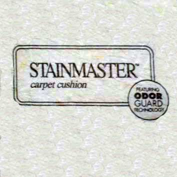 Stainmaster With Odor Guard Rebond