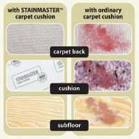 Stainmaster Pad Benefits