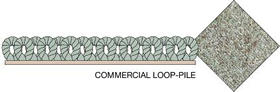 Commercial Loop