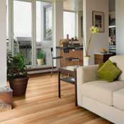 Shaw Wholesale Amp Discount Hardwood Flooring