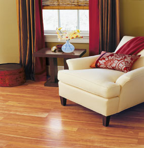 Pergo Wholesale Laminate Flooring