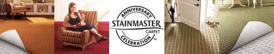 Stainmaster Sale Banner