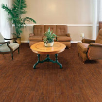 Earthwerks Vinyl Flooring - Dakota Plank