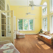 Earthwerks Vinyl Flooring - Remington Plank