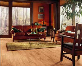 Armstrong Vinyl Flooring Amazing Wood